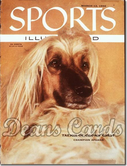 1956 Sports Illustrated - With Label   March 12  -  Afghan Dog