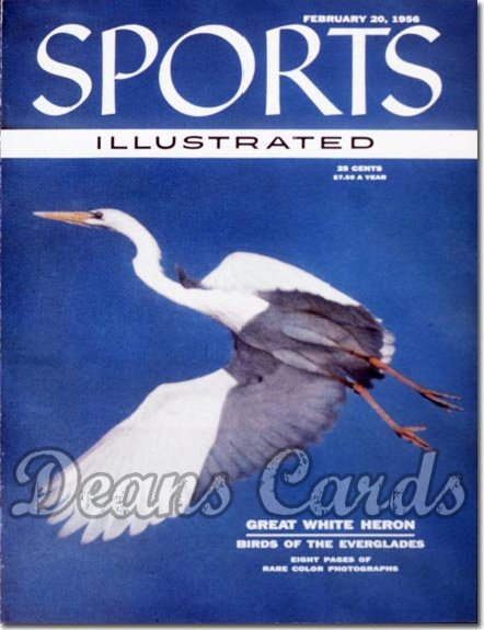 1956 Sports Illustrated - No Label   February 20  -  White Heron
