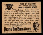 1950 Topps Bring Em Back Alive #67   Tiger On The Hunt Back Thumbnail