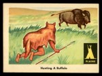 1959 Fleer Indian #16   Hunting Buffalo Front Thumbnail