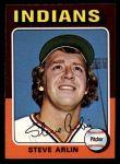 1975 Topps Mini #159  Steve Arlin  Front Thumbnail