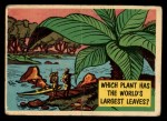 1957 Topps Isolation Booth #79   World's Largest Leaves Front Thumbnail