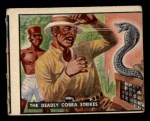 1950 Topps Bring Em Back Alive #59   The Deadly Cobra Strikes Front Thumbnail