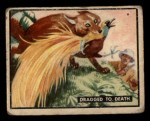 1950 Topps Bring Em Back Alive #24   Dragged To Death Front Thumbnail