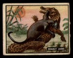1950 Topps Bring Em Back Alive #74   Deadly Jaws Front Thumbnail
