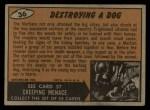 1962 Topps / Bubbles Inc Mars Attacks #36   Destroying Dog  Back Thumbnail