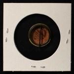 1910 Sweet Caporal Pins  Beals Becker  Back Thumbnail