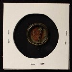 1910 Sweet Caporal Pins  Steve Evans  Back Thumbnail