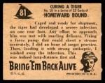 1950 Topps Bring Em Back Alive #81   Curing Tiger Back Thumbnail