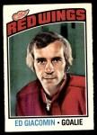 1976 O-Pee-Chee NHL #160  Ed Giacomin  Front Thumbnail