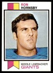 1973 Topps #256  Ron Hornsby  Front Thumbnail