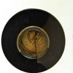 1910 Sweet Caporal Pins SM Hugh Duffy  Back Thumbnail