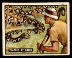 1950 Topps Bring Em Back Alive #70   Trapped By Greed Front Thumbnail