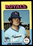 1975 Topps Mini #629  Joe Hoerner  Front Thumbnail
