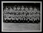 1936 National Chicle Premiums   St. Louis Browns Team 1935  Front Thumbnail