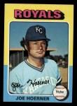 1975 Topps Mini #629  Joe Hoerner  Front Thumbnail
