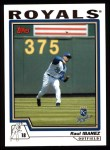 2004 Topps #238  Raul Ibanez  Front Thumbnail