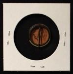 1910 Sweet Caporal Pins  Lew Richie  Back Thumbnail