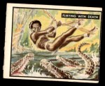 1950 Topps Bring Em Back Alive #36   Flirting With Death Front Thumbnail