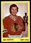 1973 Topps #112  Jim Pappin   Front Thumbnail
