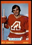 1973 Topps #29  Rey Comeau   Front Thumbnail