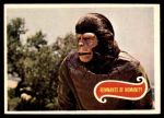 1975 Topps Planet of the Apes #8   Remnants of Humanity Front Thumbnail